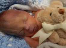 Father needs public's help with finding tiny teddy bear that belonged to his son