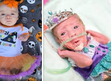 Preemies get into festive spirit celebrating their 1st Halloween in adorable costumes