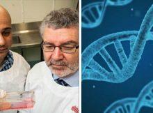 Scientists make massive breakthrough in hunt to find cure for cervical cancer