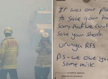 Firefighters who saved house from fire leave milk apology note that goes viral