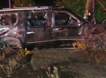 Infant ejected from SUV during highway rollover accident survives