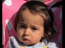 Police search for 1-year-old girl who went missing after mom found dead at their home
