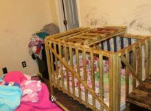 5 young children removed from their family home after allegedly being locked in wooden cages