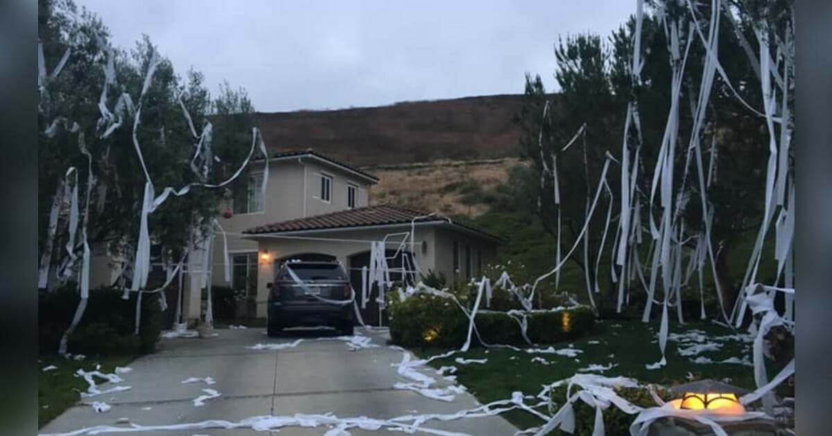 Mom shares a 'few choice words' after pranksters throw toilet paper all over her yard