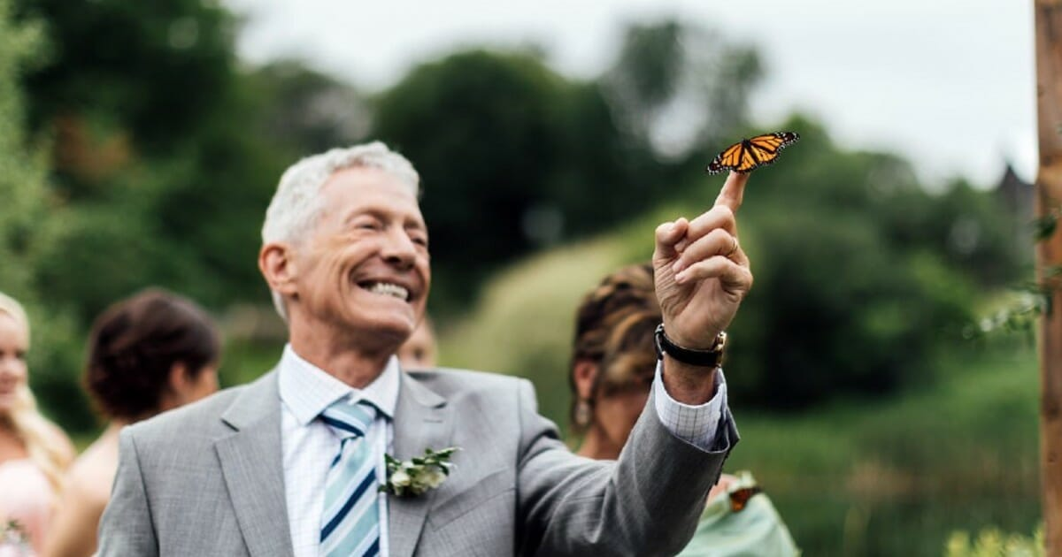 Butterfly lands on dad's hand during emotional tribute to late daughter at son's wedding
