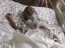 4-year-old boy survives hit-and-run after being dragged down street by pick-up – help us pray for him
