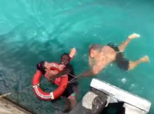 Fearless men dive into water after cruise ship passenger in wheelchair rolls off dock