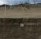 Hurricane Dorian exposes sea turtle nest on North Carolina beach