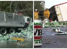 TRAGIC: Truck accident leaves beer spilling out all over the highway