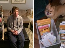 Disabled boy wants pictures of dogs to celebrate his birthday – thousands of people are sending them