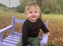 Remains of missing 15-month-old Evelyn Boswell found in Tennessee, according to authorities